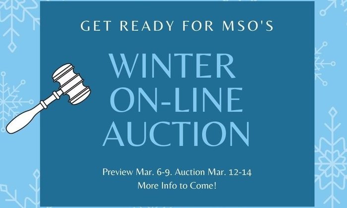 Coming Soon: Online Auction